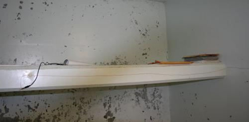 bunk in a CA SHU